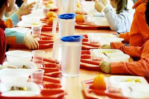 Mensa scuole materne ed elementari: iscrizioni, conto elettronico e buoni pasto
