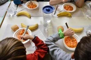 Mensa scolastica –  tariffe, agevolazioni e conversione buoni pasto